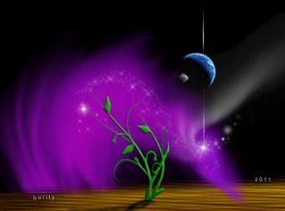 Imagem - Alizarin Crimson e planta