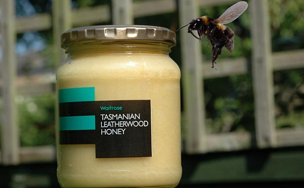 Tasmanian Leatherwood honey - a unique taste