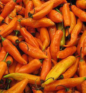 Aji amarillo chillies