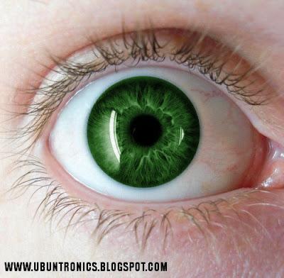 El significado del color de tus ojos taringa - Colores verdes azulados ...