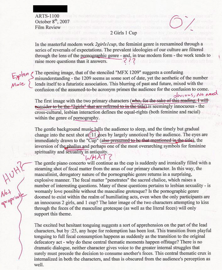 College application funny nyu essay SIZZLE