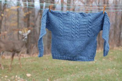 Deer creeping up on blue sweater