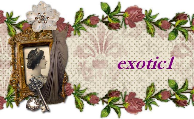 Exotic1