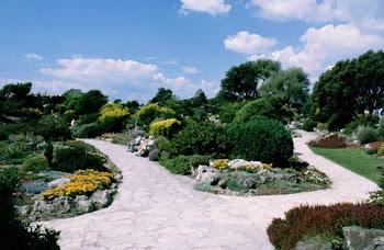 The Rock Gardens