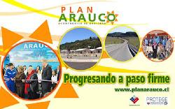 Noticias  de  Arauco