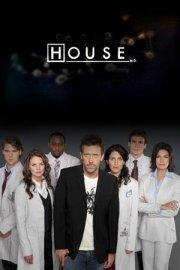 House 8×14 S08E14 Love is Blind español online