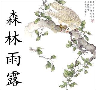 Escritura China & Las Bibliotecas