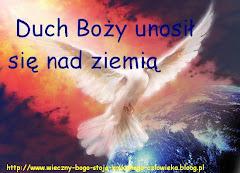 Duch Święty ,jak gołębica