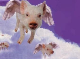 http://3.bp.blogspot.com/_KYBWq2T9zdI/Ru85lFcdX8I/AAAAAAAAAFk/CrhQgoax-zY/s400/flying_pigs.jpg