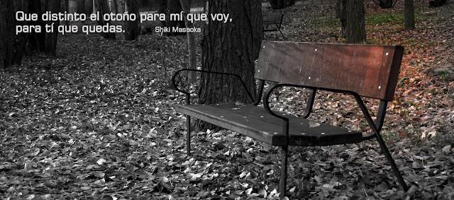 otoño_de_la_vida