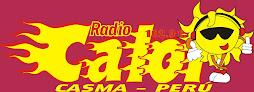 RADIO CALOR 102.9 fm