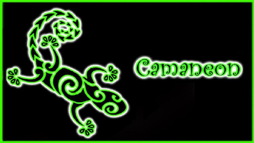 Camaneon