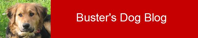 Buster's Dog Blog