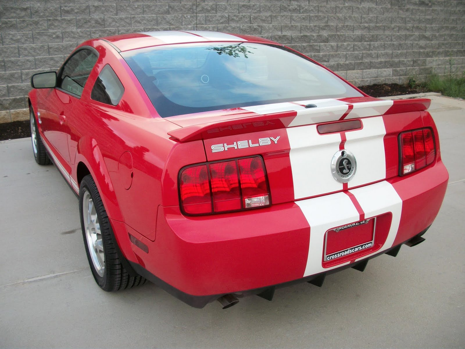 ford mustang shelby gt500 07 i take pictures of cars. Black Bedroom Furniture Sets. Home Design Ideas