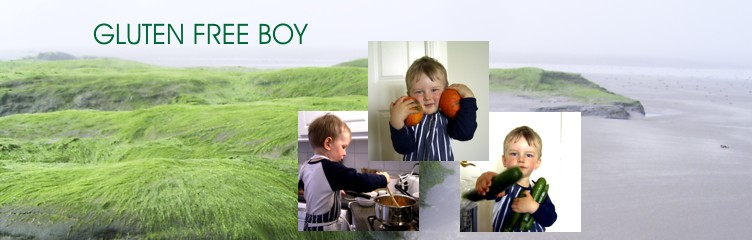 Gluten Free Boy