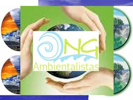 VISION AMBIENTAL DE LAS O.N.G.s AMBIENTALES DE CALDAS