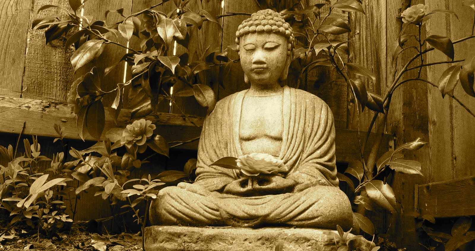 Old Enough To Know Better If You Meet The Buddha On The