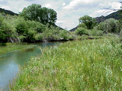 Spanish Fork River Park