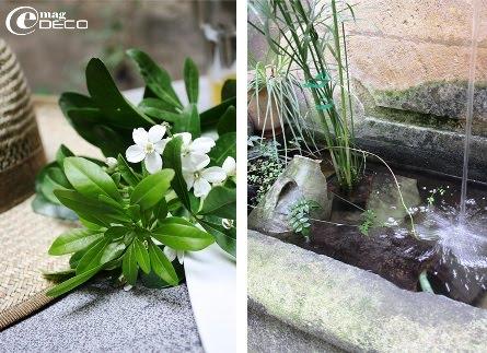 Détail de la fontaine dans le patio de L'Albiousse