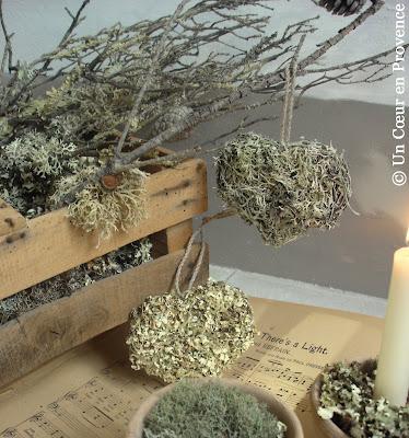Coeurs de lichen et clayette