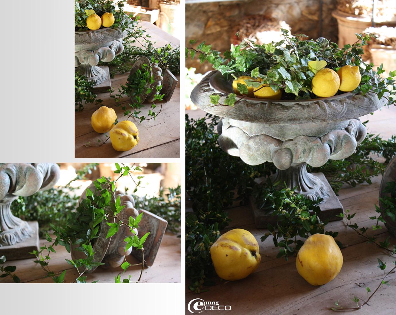 Mise en scène vase, lière et citrons