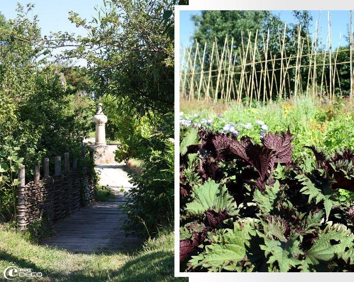 Le jardin potager de La Chassagnette
