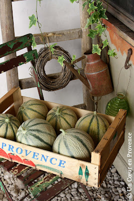 Melons of Provence