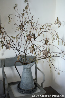 Hazelnut branches where the catkins mix with stars