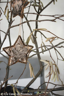 Hazelnut branches with stars