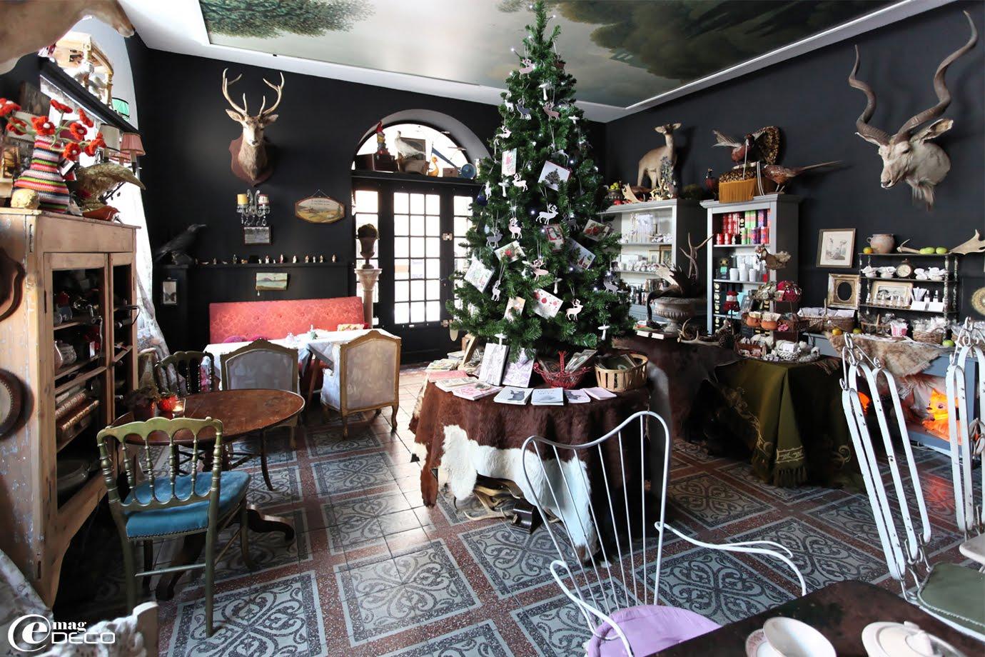 Le premier salon et boutique du salon de curiosités Ad Libitum à Privas en Ardèche