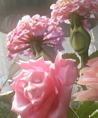 The Flowers  Alice in Wonderland Wiki