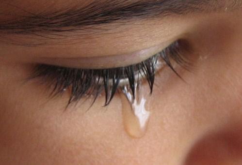 Shed tears synonym