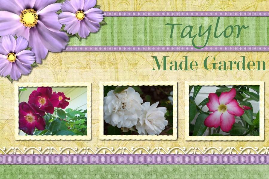 Taylor Made Garden