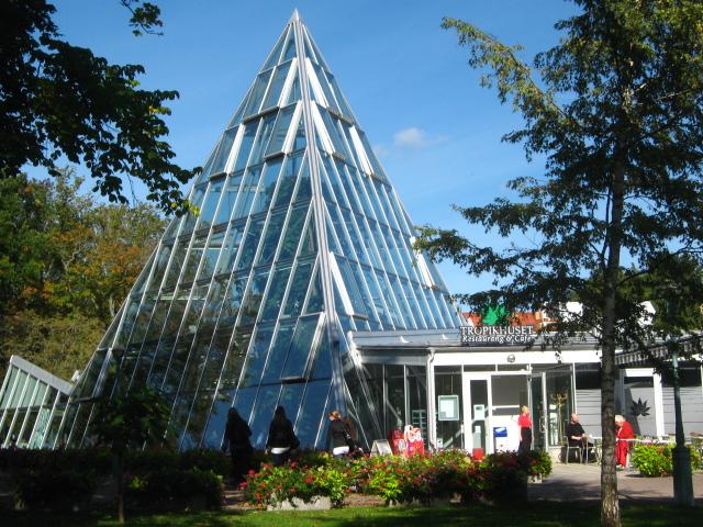 photo of Linköping botanical gardens tropical plant hothouse by Susan Wellington