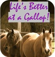 Life's Better at a Gallop, Doncha Think?