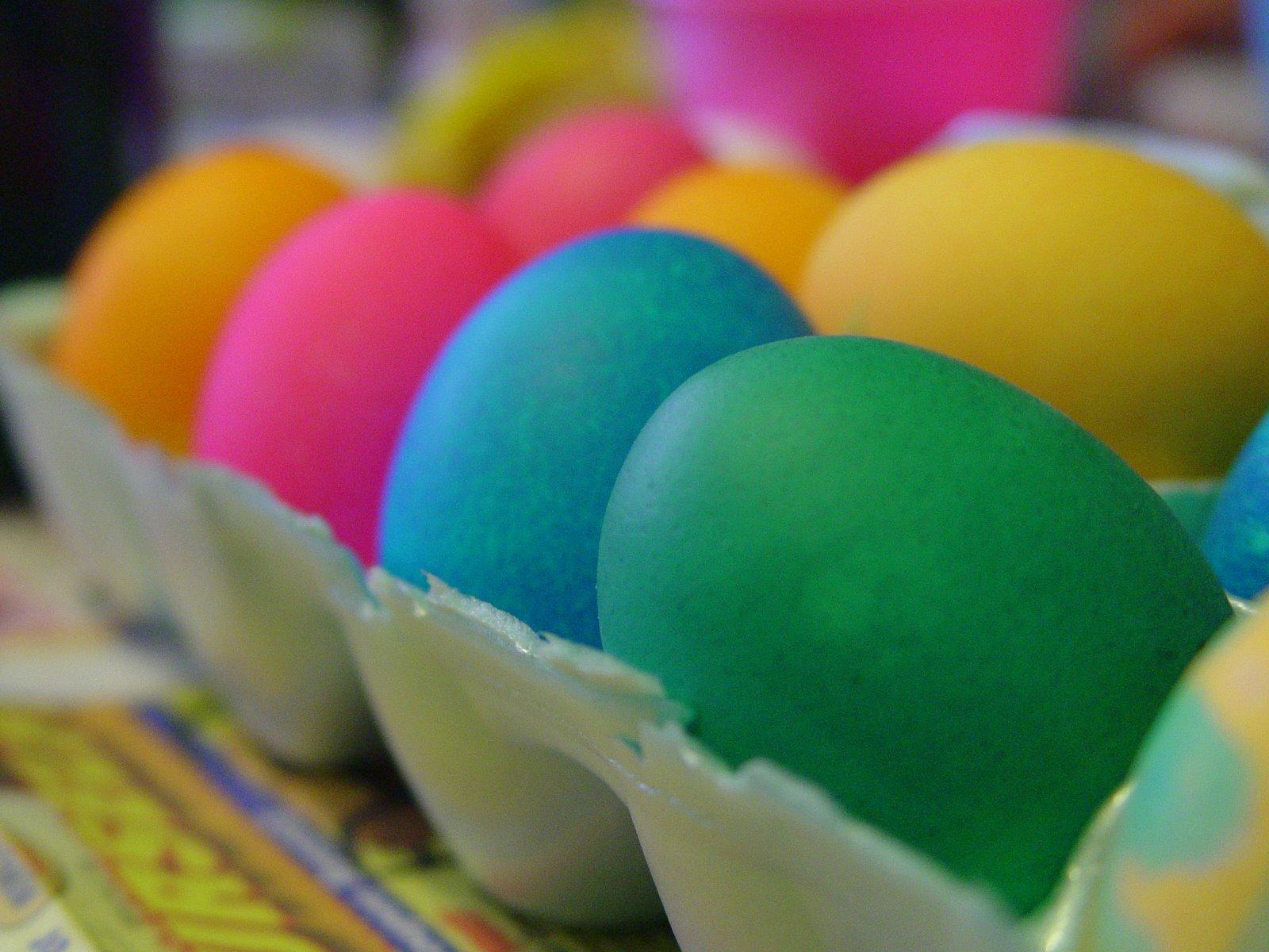 [eggs.jpg]