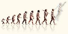 A real evolução