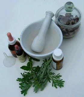 Artículo: Preparados caseros contra Plagas y Enfermedades Machacador