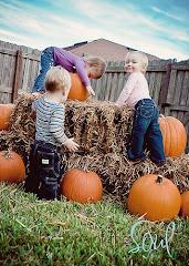 My pumpkins!
