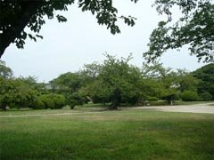 西の丸庭園
