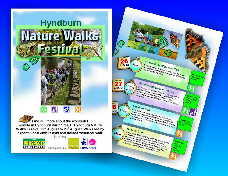 Walking events leaflets