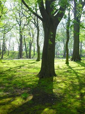 Queens Park, Rochdale