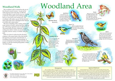 Coronation Park, Woodland Interpretation
