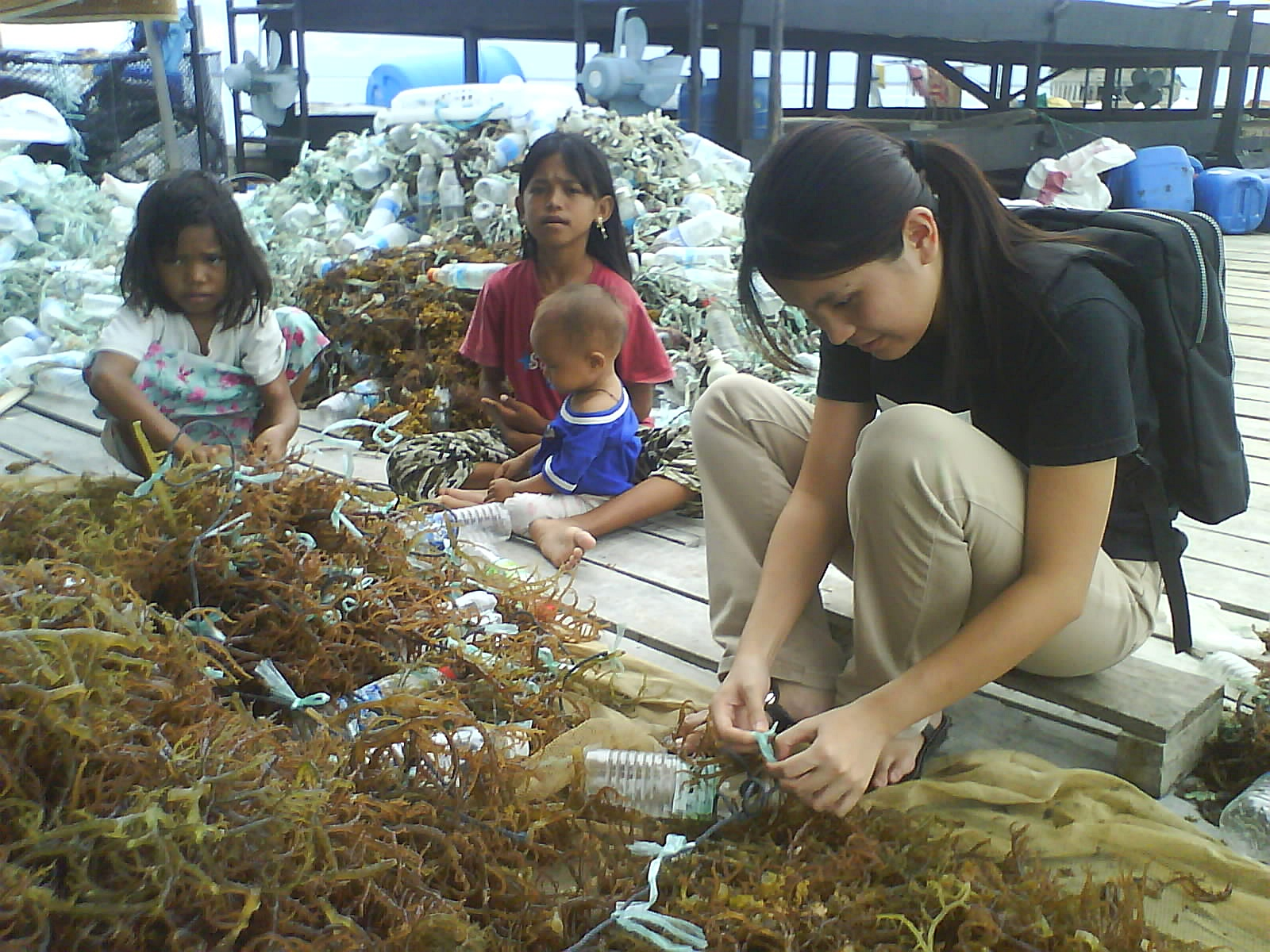 As Raw It Gets 2009 Jolie Clothing Dione Top Merah Muda All Size Sabah Is Indeed In Abundance Of Natural Resources Moreover There A Need For Research And Development Specializing Seaweed Order To Increase The