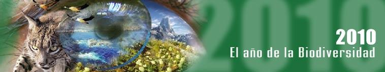 2010: El año de la Biodiversidad