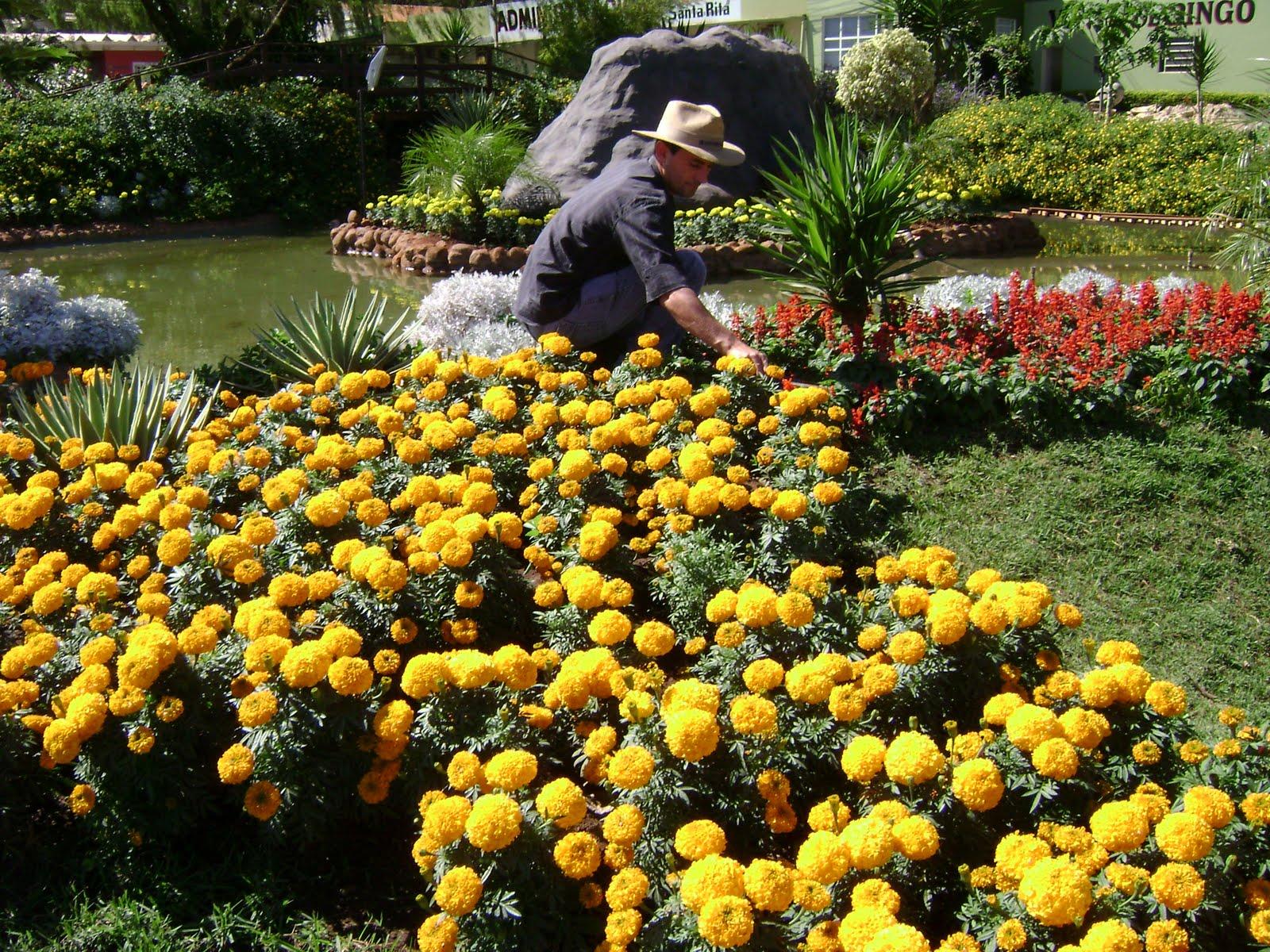 Paisaje bitacora curso de jardiner a y paisajismo - Trabajo de jardinero en madrid ...