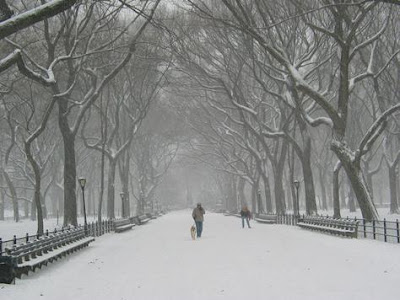 New York City Snow Pictures