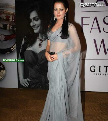 Celina Jaitley in A Sexy Transparent Saree pics