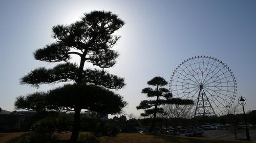Kasai Rinkai Park, Tokyo
