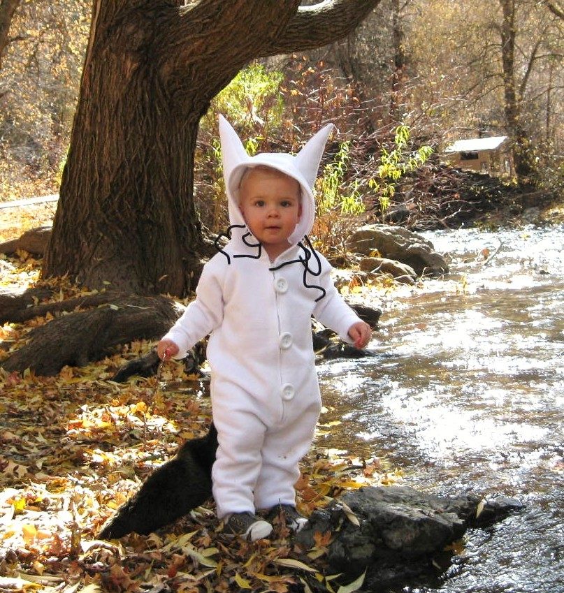 Last year I was excited to make him the Max wolf costume from the book Where the Wild Things Are.  sc 1 st  Running With Scissors & Running With Scissors: Halloween Costume: Ewok